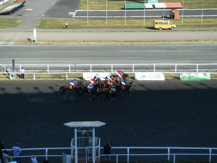 The winners of the festive races at the Kazan Hippodrome were determined