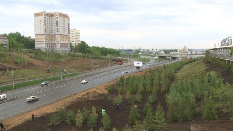 На склонах Аметьевской магистрали проводится масштабная «зеленая реконструкция»