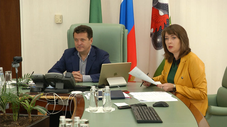 The Mayor of Kazan took part in an online webinar of the BRICS Youth Energy Agency