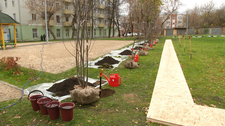 I.Metshin took part in tree planting in the Kirovsky district of Kazan